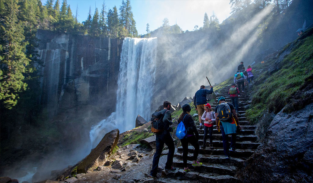 Yosemite National Park is home to many incredible attractions—magnificent granite cliffs, extraordinary wildlife and bright beds of lively wildflowers—but what really drives visitors to make their way to Yosemite? The chance to see one of Yosemite's famous waterfalls.